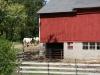 Cattle barn entrance on Mueller farm- 2010