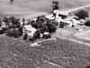 Steinhoff farm on Hwy 59- circa 1950's