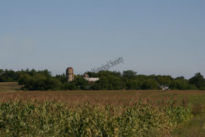 View of Nelson farm from the fields in 2009